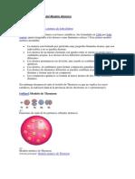 Evolución Histórica del Modelo Atómico.docx