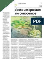 LOS BOSQUES QUE AÚN NO CONOCEMOS