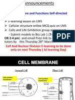 Structure N Functions of CSM