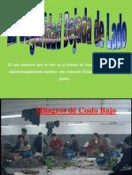 Inseguridad_o_Insanidad_para_Certificacion_de_Calidad.ppsx