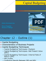 Cap Budgeting 1ce