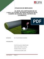 Monografia Investigacion de Mercadols