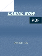 Labial Bow