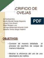 SACRIFICIO DE OVEJAS   2.ppt