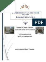 Informe Egreso Martin Verdi