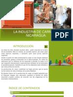 La Industria de Carne en Nicaragua