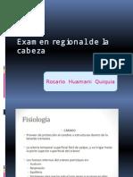 Examen Regional de La Cabeza y Cuello (1) (1)