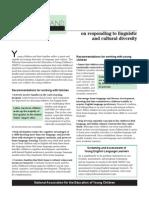 diversity pdf