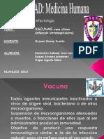 Vacunas seminario