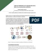 Alteraciones inducidas por Wolbachia en la reproducción de los artrópodos y sus consecuencias evolutivas