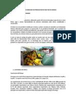 Estudio de Mercado de Produccion de Nectar de Mango Final.