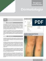 Desgloses Com Derma