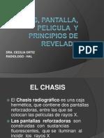 Clase 3-Chasis, Pantalla Pelic y Rev
