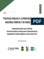 Politicas Publicas y Propuesta de PNFFS