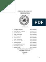 Paper Embriogenesis