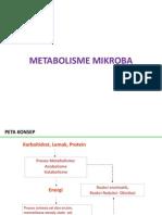 METABOLISME MIKROBA.pptx