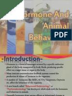 Hormone and Animal Behaviours