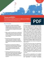 UN-REDD Programme Policy Brief Tenure and REDD+