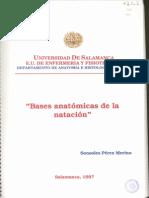 Bases_anatomicas_de_la_natacion(Sonsoles_Peréz_Merino)