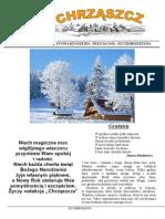 Chrząszcz - Grudzień 2013(nr 93)