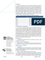 Toxina Epsilon de Clostridium Perfringens