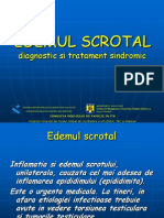 18 Edemul Scrotal