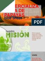 Comercializadora de Papayas