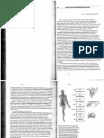 Hacia Una Neurobiologia de La Mente-Patricia Churchland