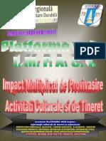 Platforma Web Impact Ardd 2013