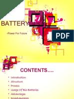 Bio Battery.