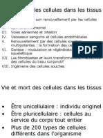 Cours-Medecine Info-Histologie-L Epiderme Et Son Renouvellement Par Les Cellules Souches
