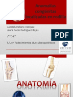 Anomalías congénitas localizadas en rodilla