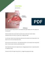 Fakta Unik Tentang Lubang Hidung