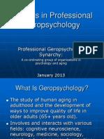 Professional Geropsychology
