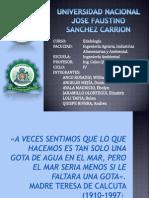 CONTAMINACION DE SUELOS POR CIANURO (EDAFOLOGÍA)