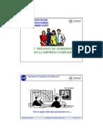 Organos de Gobierno de la Empresa Familiar.pdf