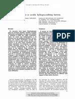 Hydrogen Metabolism in Aerobic Hydrogen Oxidizing Bacteria