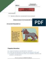Produccion de Texto Descriptivos
