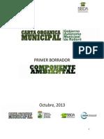 COMPONENTE AMBIENTAL ROBORE.pdf