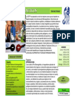 Curso Pares Biomagneticos