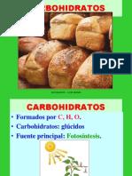 CARBOHIDRATOS_NUTRICION