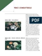 Referat ciuperci comestivile
