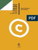 Prawo Autorskie w Czasach Zmiany_raport