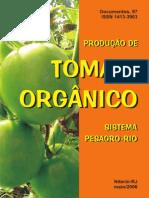 Tomate Organico