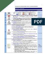 Ejemplo Protocolo Reuniones Ejecutivas