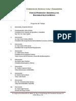 Programa de Trabajo Foro Biocombustibles