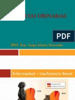 Urgencias Urinarias