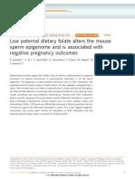 Agent Orange Paternal Epigenetics