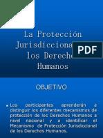 Diapositivas Presentacion de La Proteccion Jurisdiccional de Derechos Humanos