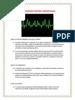 Cardiograma Funcion e Importancia